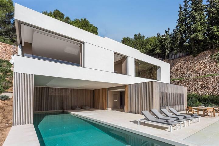 Top quality design villa