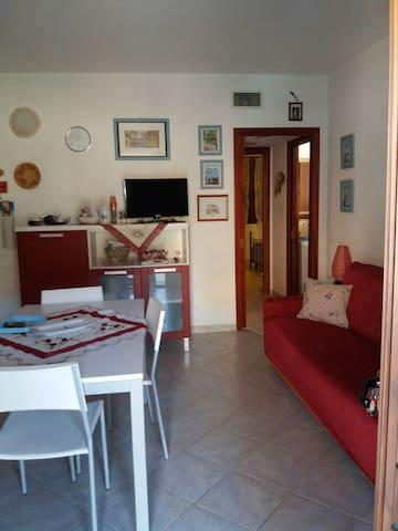 Confortevole appartamento con ampia veranda