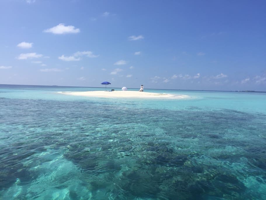 We offer sandbank picnic trips,