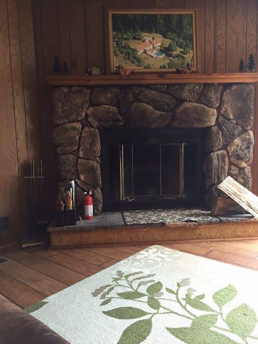 Fireplace in Den