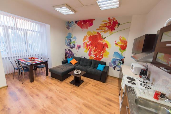 Flower Apartment - Plovdiv's Center Jewel