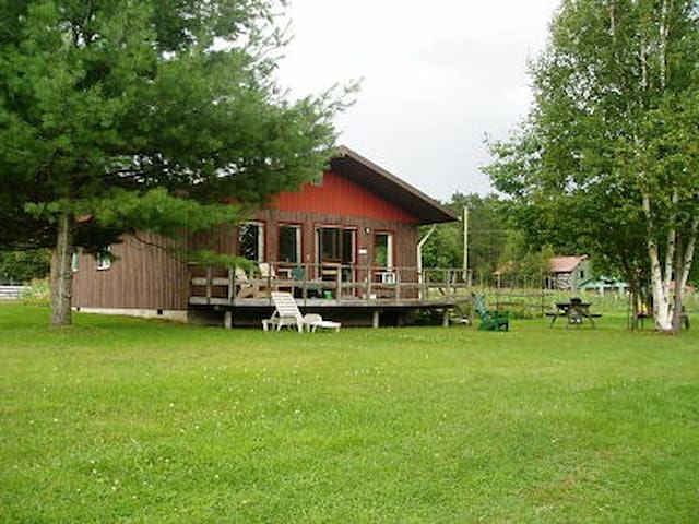 Sunflower Cottage, Lake of Bays - Dwight - Cabin