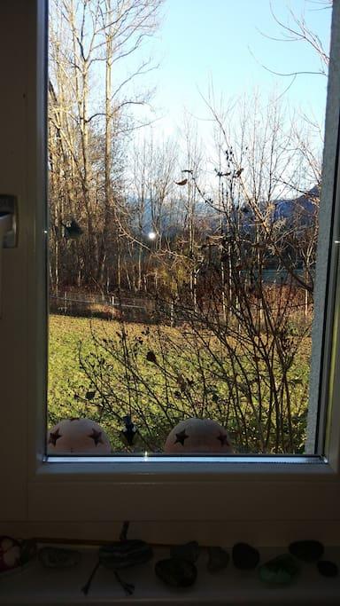 Sicht aus dem Küchenfenster