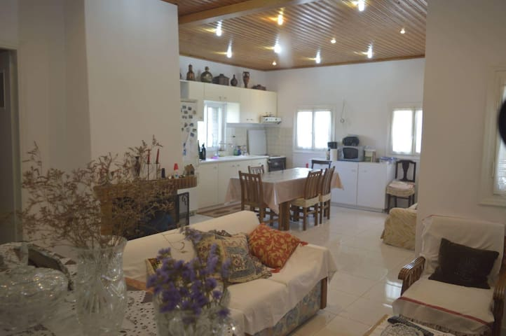 Lovely house near the beach in Sounio