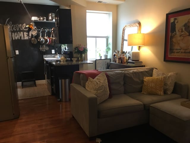 Cozy furnished 1-bedroom in Columbia Heights - Washington - Pis