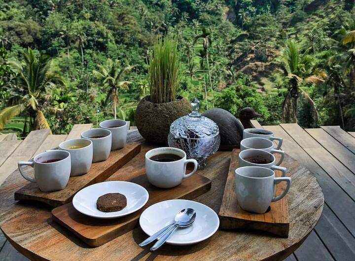 Various coffee and teas tasters