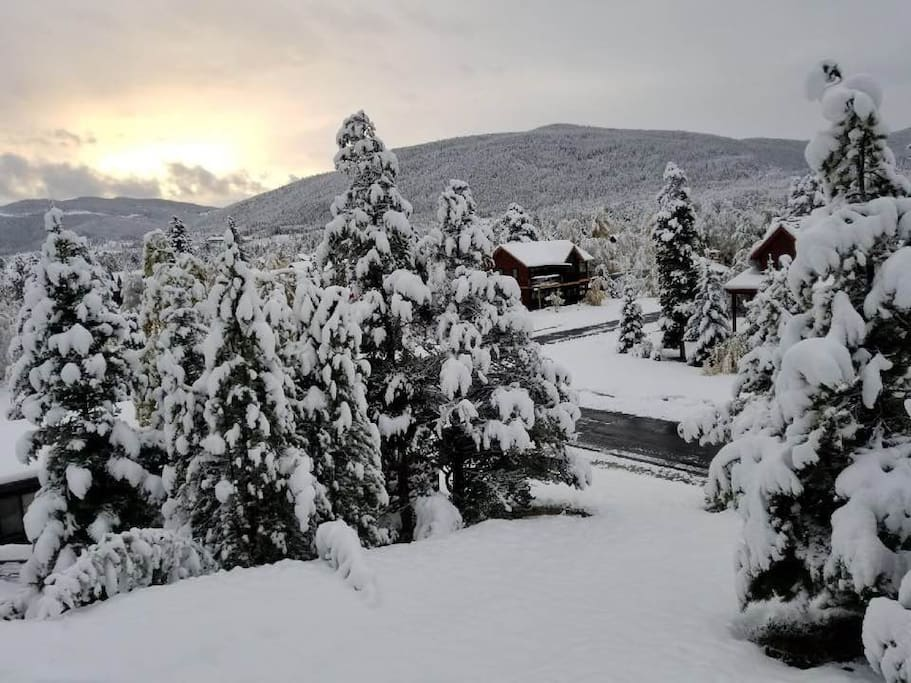 Early season snowfall - panoramic view from shared deck