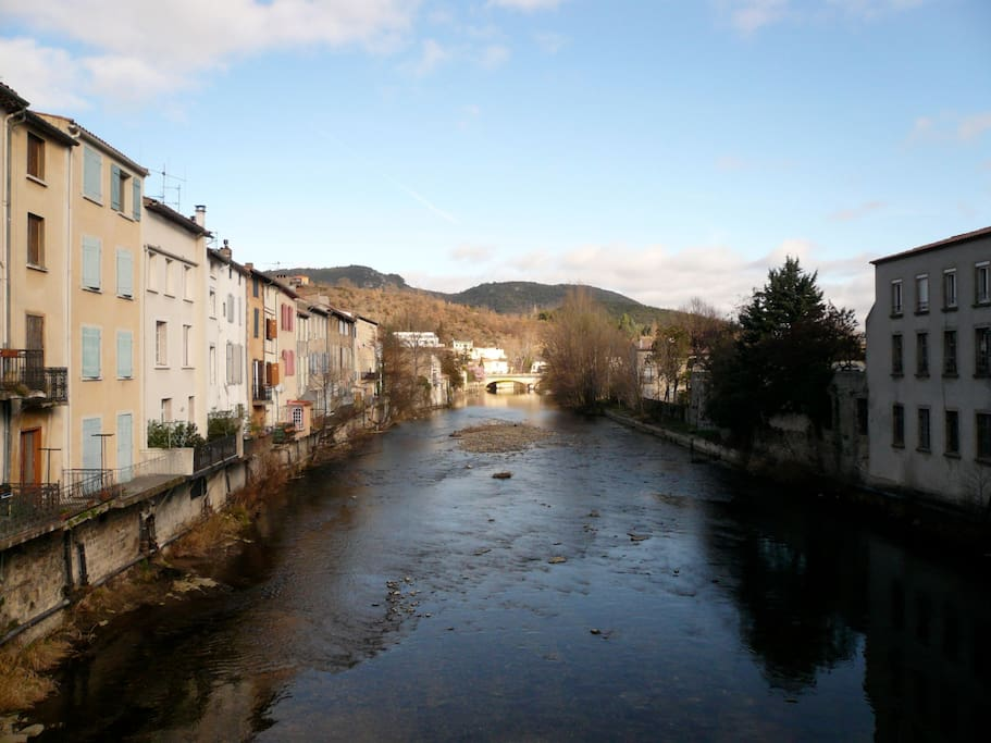 The river from the Pont Vieux