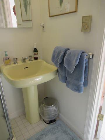 Bathroom sink, shower on left