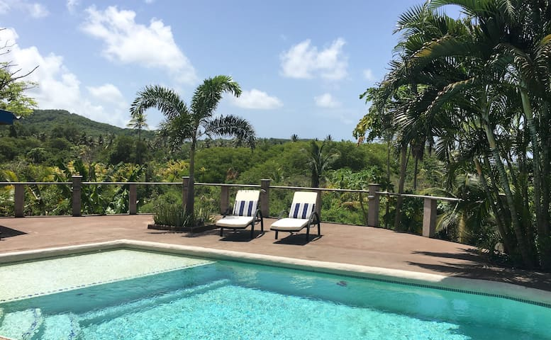 OCEANVIEW APARTMENT WITH POOL & BEACH ACCESS - Scarborough - Daire