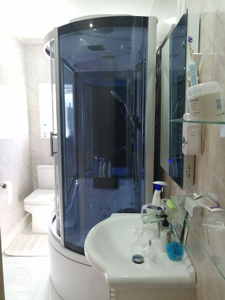 Bathroom with hot tub and jet shower and steam.