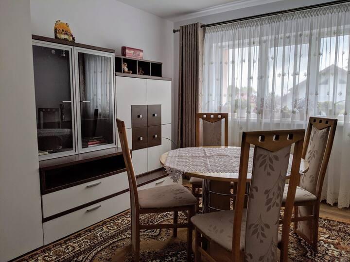 Apartament primitor în inima Bucovinei