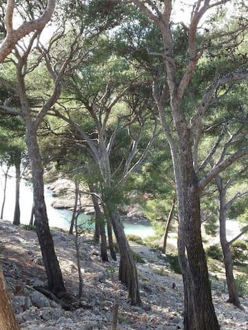 Marseille, Calanques et soleil - Les Pennes-Mirabeau - Hus