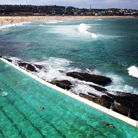 Beautiful Beachside Apartment - Bondi Beach - Appartement