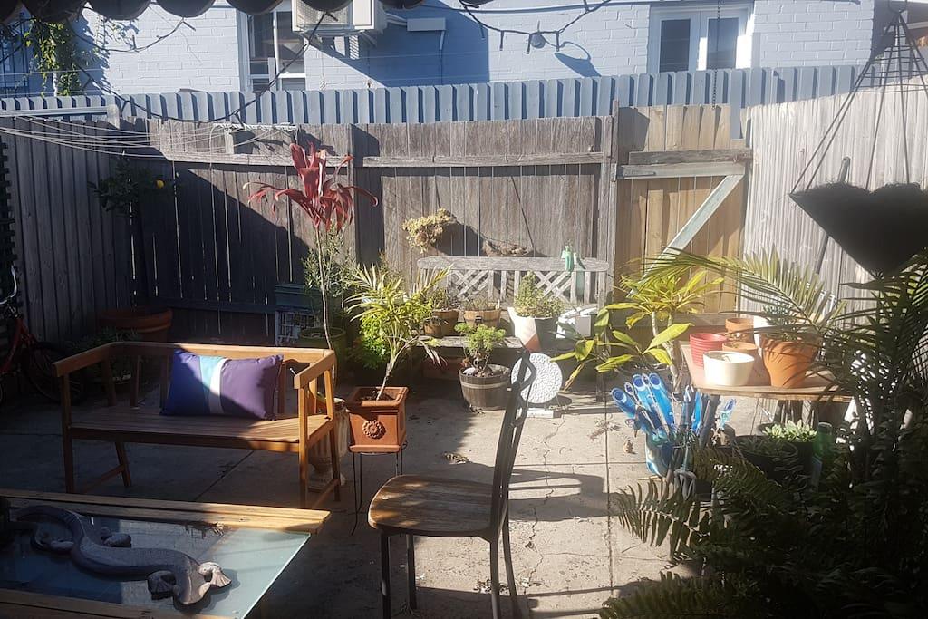 Chillin in the yard..