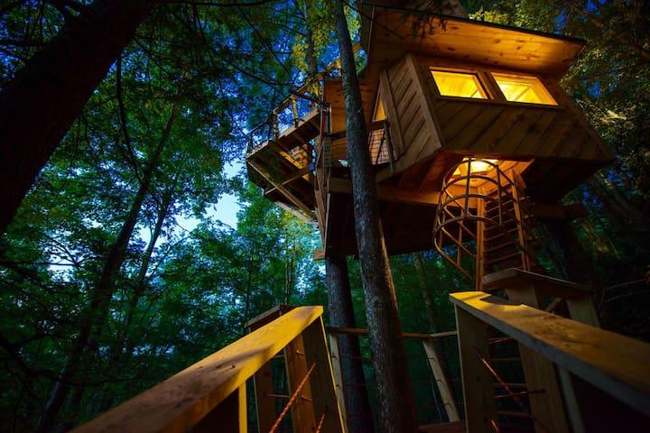 The Observatory - Stanton - Domek na drzewie