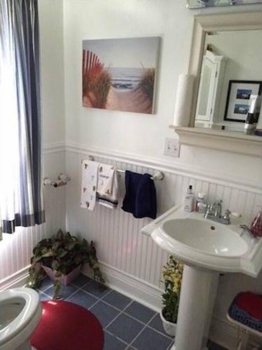Main floor bathroom with shower stall