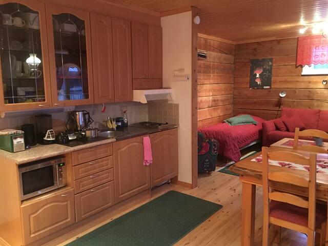 Saunallinen, lomahuoneisto 4 km keskustasta - Tornio