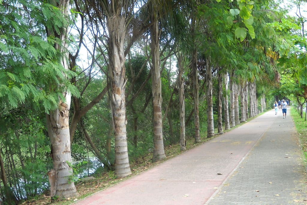 Pista para caminhada e ciclovia ao longo do Canal de Marapendi