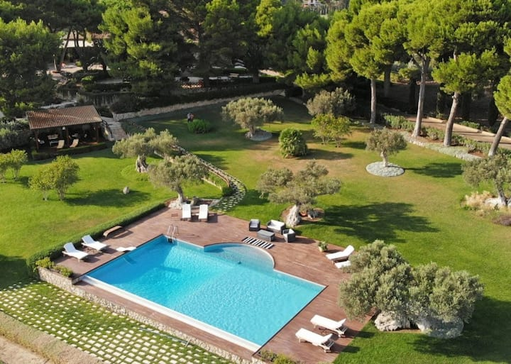 Luxury Villa Surrounded by Olive Grooves