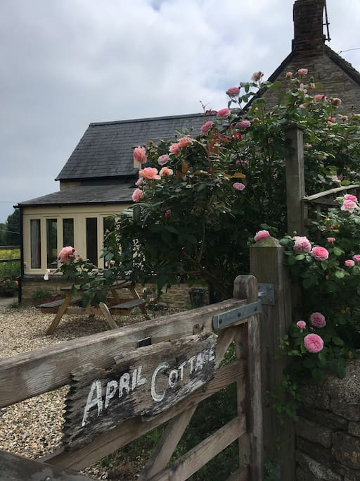 The entrance to the cottage and the annexe