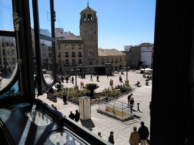 Alojamiento Mesones Plaza