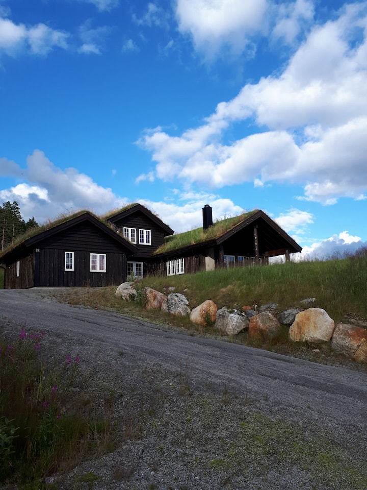 Hytte på Brokke