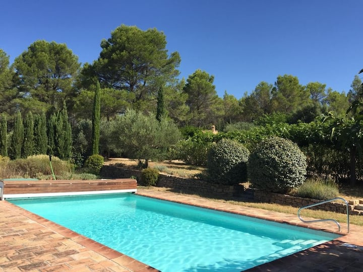 Pinede, vineyards, olive trees and sun