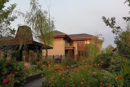 崇明海岛东平森林公园独栋花园奢华别墅Forest Villa
