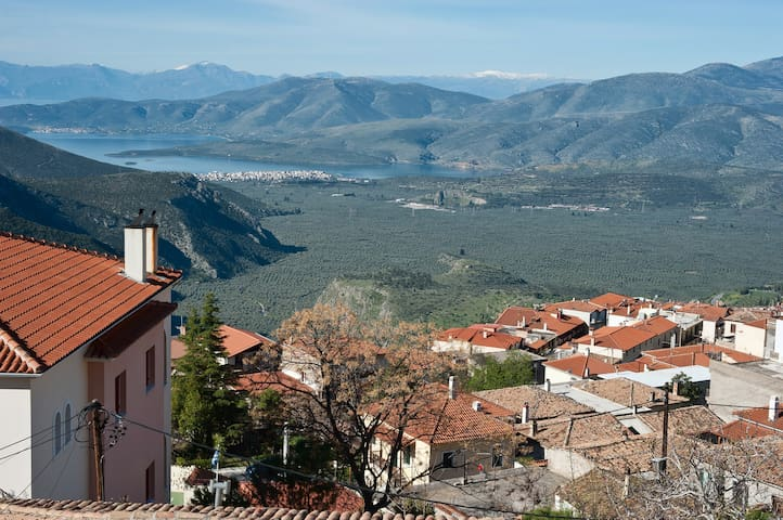 Wonderful views overlooking the traditional town of Delphi and the Olive Tree Valley!