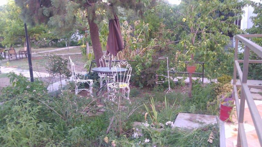 Ayvalık Çamlık'ta Bahceli Dubleks Ev