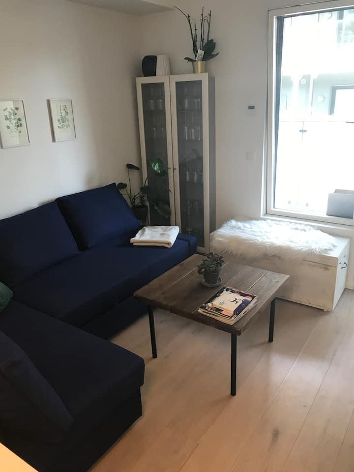 2-værelses lejlighed centralt i Roskilde