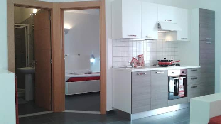 Apart-hotel : standard one bedroom apartment