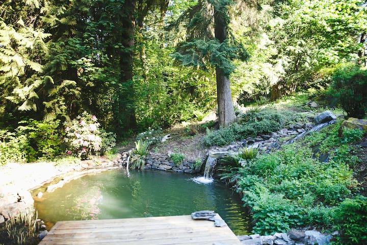 The Peacock Chamber   Arborea Falls