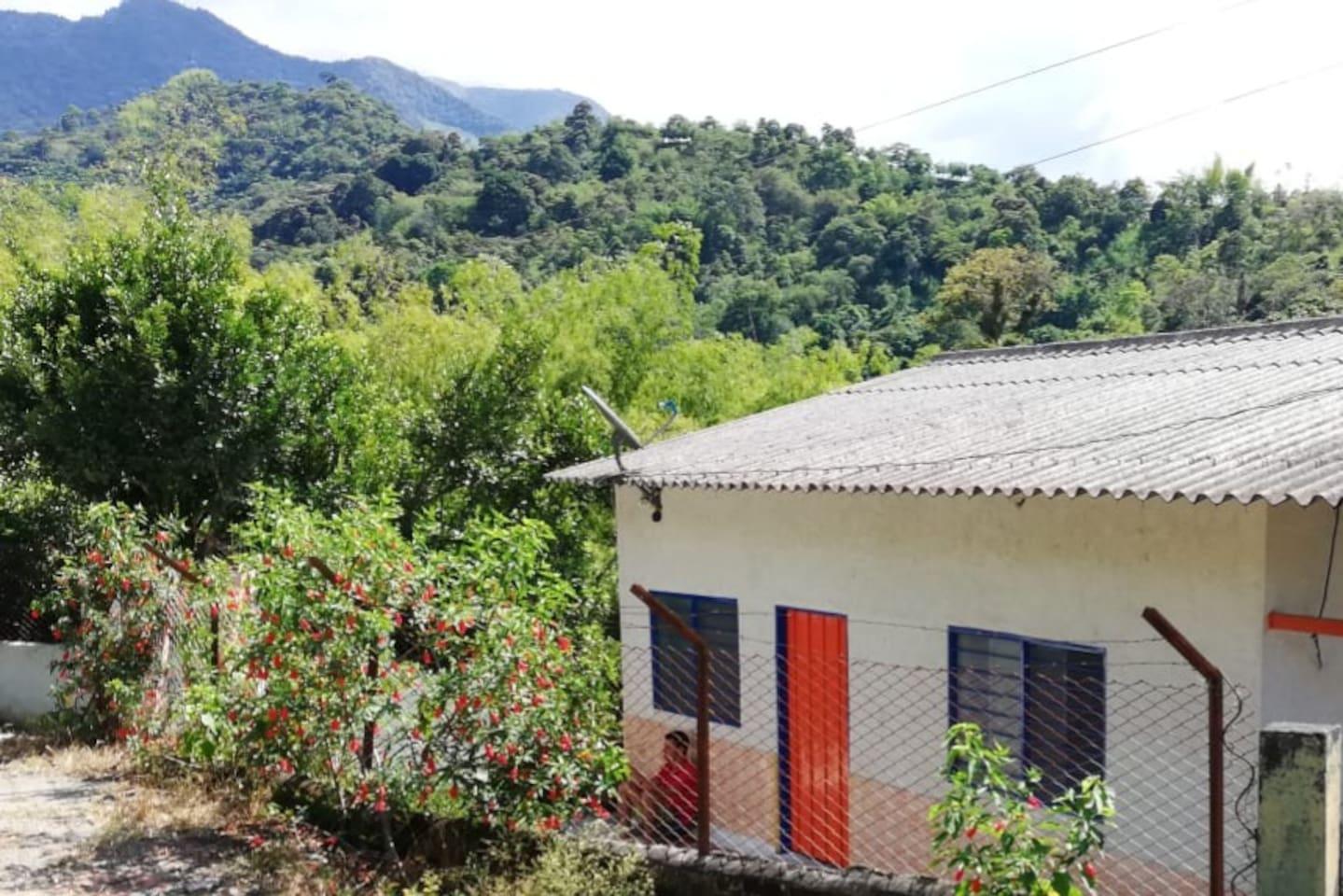 Finca Los Guaduales en Pijao Quindio