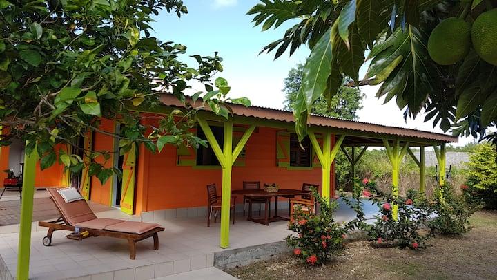 Maison Créole dans ravissant jardin