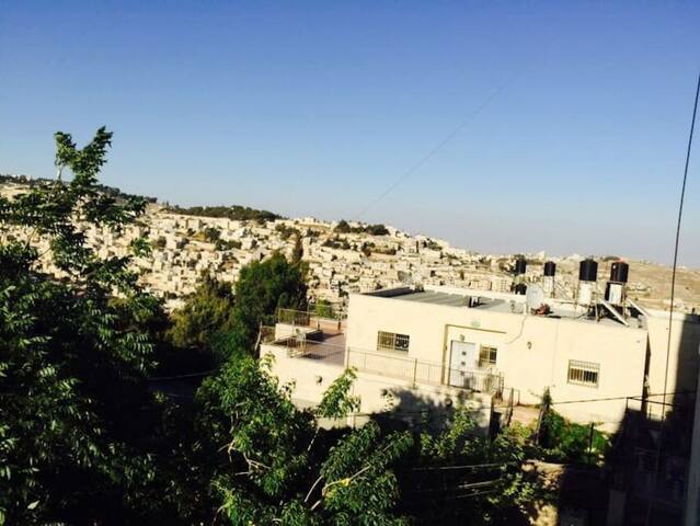 Spacious and sunny flat, awesome view (Room 2) - Jerusalem - Apartment