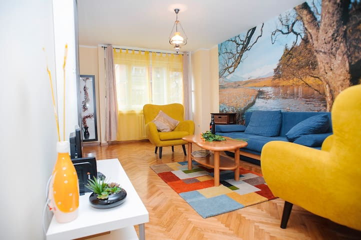 Spacious onebedroom apartment near the city center