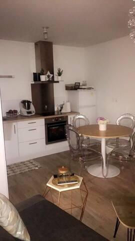 Jolie appartement cosy à Tours