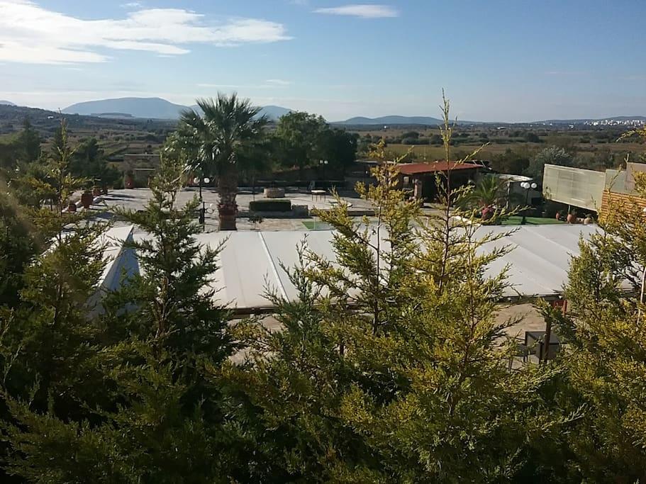 The View from Veranda