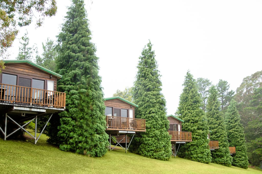 5 private cabins on 43 acres in Bilpin