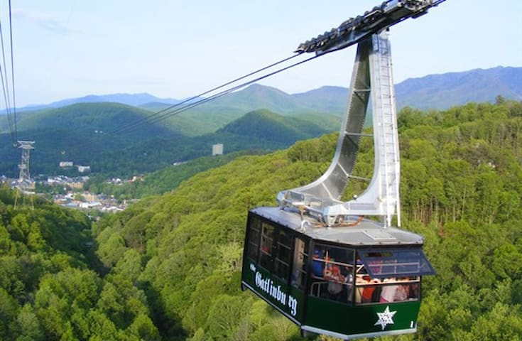Walk from the condo to the sky tram which will take you to the ski Slopes and Ober