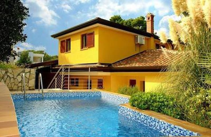 House with swimming pool Buje