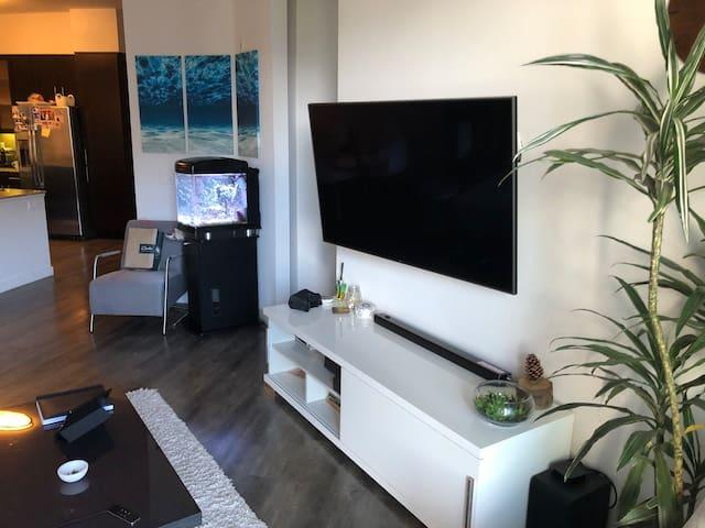 Beautiful  modern big 1 bedroom apt
