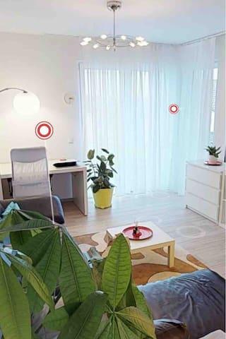 1 km zu SAP großes modernes Apartment, zentral