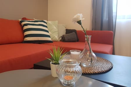 Radomir Downtown Apt. 1      *Brand New*