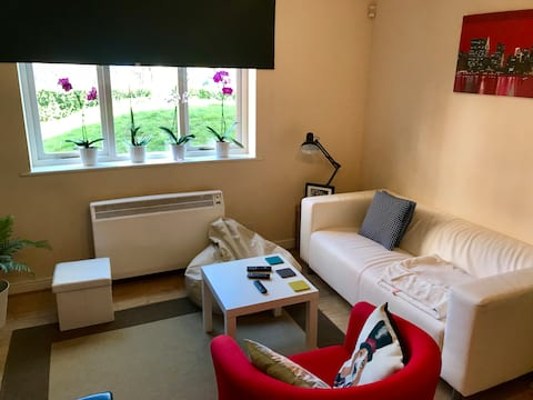 LONDON Fantastic Two Bedroom Flat for 4 people !