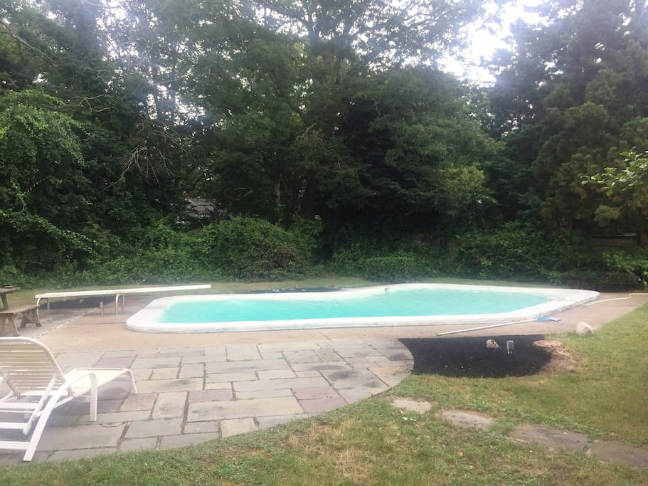 Great in ground pool with a rare diving board!
