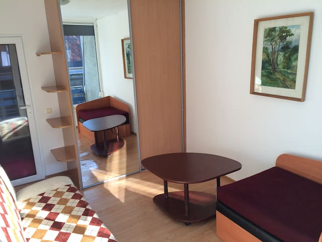 Bedroom for 2+1 with sofa bed and single bed with balcony