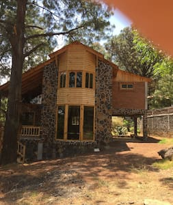 Mi cabaña  en el bosque